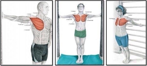 Упражнения для полноценной растяжки