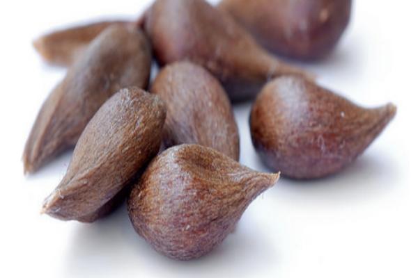 Это семя содержит витамин B17, который разрушает худшую из болезней, как по волшебству