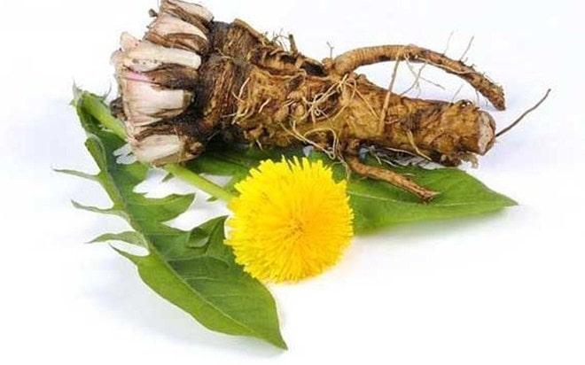 Свойство этой травы уникально – даже химиотерапия не так сильна