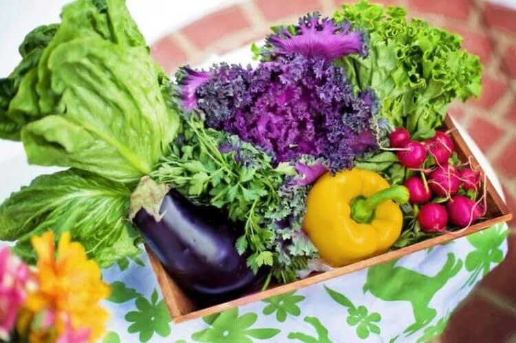 Диета DASH названа диетой № 1. Как применять ее в жизни