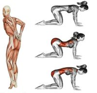 Упражнения на растяжку, которые быстро избавят от боли в спине