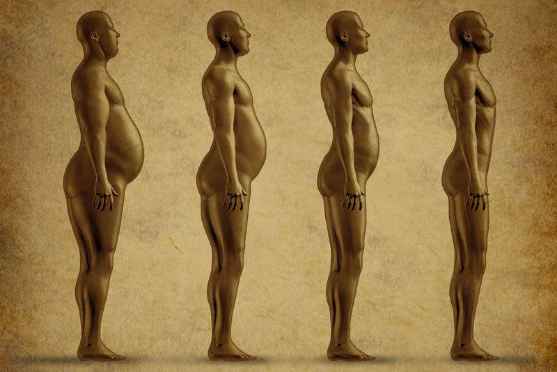 Жир: что важно знать желающим сбросить вес