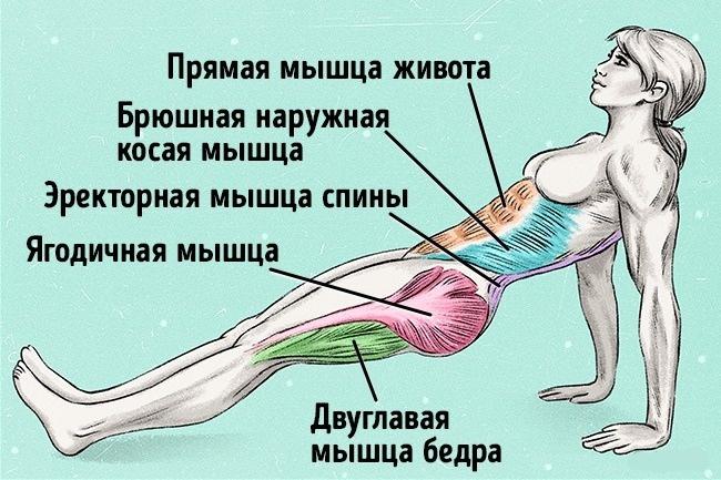 Всего одно упражнение, чтобы сжечь жир и исправить осанку!