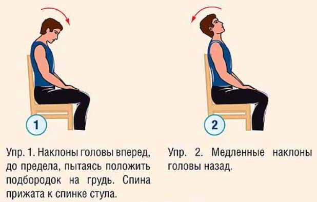 Позвоночник: от какого позвонка что болит? 5 упражнений для позвоночника, которые лечат все органы