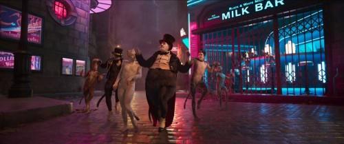 Тейлор Свифт и Идрис Эльба в первом трейлере экранизации знаменитого мюзикла «Кошки»