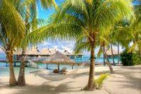 Доминикана: зачем туда ехать, лучшие курорты, что нужно сделать обязательно
